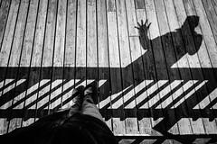 My Shadow Says Hello (Nicholas Erwin) Tags: shadow lines contrast blackandwhite monochrome bw mono me nicholaserwin nickerwin spring outside waving waterbury vermont vt unitedstatesofamerica usa america fujifilmxt2 fujixt2 xf1024mmf4rois xf1024 fuji1024 selfie self selfportrait fav10