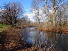 DSC05761b (Naturecamhd) Tags: dschx90v hx90v newyorkbotanicalgarden nybg botanicalgarden nature bronx green eco sonyhx90v thebronx sonydschx90v twinlakes reflection winter