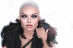 sans  ailes (ℜØSE Siabonne) Tags: session skin bento mesh sl eye lelutka appliers omega
