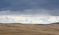 Storm Over Hills (Dave Stromberger) Tags: cheneywa clouds hills storm field