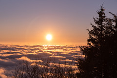 Sunset (Nicomonaco73) Tags: la feclaz savoie 73 france alps snow winter snowy sunset clouds beautiful landscape nikon d750