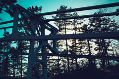 KRIS8139 (Chris.Heart) Tags: erdő buda budapest túra természet forest nature hiking