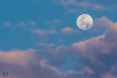 Altos de Guadalupe en Cali (Augusto Silva Otero) Tags: cali colombia luna naturaleza paisaje valledelcauca co