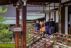Daikakuji Temple, Arashiyama, Kyoto (Christian Kaden) Tags: daikakuji j2015 japan kansai kioto kyoto monk mönch tempel temple お坊さん お寺 京都 仏教 仏閣 大覚寺 日本 関西