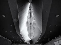 Sky light (Tim Ravenscroft) Tags: roof ceiling airport arctitecture osaka kansai kix japan contemporary monochrome blackandwhite blackwhite hasselblad hasselbladx1d