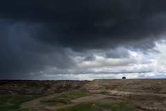 Darkclouds (pinusylvestris) Tags: naturaleza d7500 nikon sigma 1770 contemporary storm lluvia tormenta agua paz arbol tree