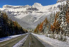 A beautiful new day on the Icefields Parkway in Banff National Park, Alberta Canada (PhotosToArtByMike) Tags: icefieldsparkway banffnationalpark canadianrockies snow snowstorm snowy morning banff albertacanada mountain mountains alberta