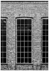 window(s) (MAICN) Tags: glass architektur building window mono linien sw münchen bw glas blackwhite monochrome geometrisch schwarzweis fenster architecture einfarbig lines geometry gebäude