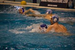 ProRecco_2019_02_06-5 (manuela albanese) Tags: freetime sport water sori recco pallanuoto waterpolo prorecco