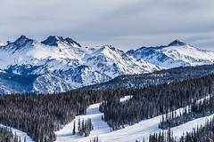 Powder Day at Vail (mnryno) Tags: snow peaks mountains vail skiing colorado