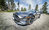 Playing its 'tourist' part to the full (cedant1) Tags: ford mustang car ponny muscle musclecar ecoboost sequoia nationalpark nature road pins threes sky horses wheel bokeh d750 nikon nikond750 samyang 14mm