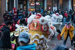 A humble little pig. (kuntheaprum) Tags: chinatownboston chinesenewyearcelebration yearofthepig sony a7riii tamron 2470mm f28 festival parade dragon firework