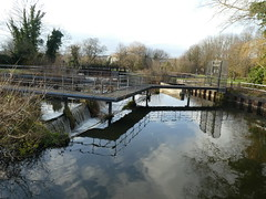 UK - Hertfordshire - Near Hoddesdon - Dobbs Weir (JulesFoto) Tags: uk england ramblers capitalwalkers hertfordshire hoddesdon dobbsweir leenavigation