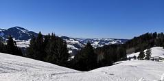 Back in beautiful Ober Allgäu (MargrietPurmerend) Tags: hündlebahn hündle alps snow wintersport oberallgäu