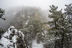 0055_GOPR4826 (marcellszmandray) Tags: ausztria hohewand gutensteinialpok alpok viaferrata kirándulás tavasz hó gebirgsvereinsteig