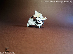 Second Life A5 Newspaper Papillon dog - Barth Dunkan. (Magic Fingaz) Tags: anjing barthdunkan chien chó dog hond hund köpek origami paperfolding perro pies ecorigami origamidog собака 犬 狗