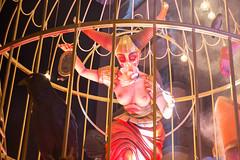 Carnevale Putignano 2019 (Tiziana de Martino) Tags: carnevale carnival carnevali italiani italia puglia putignano bari carri allegorici cartapesta festa coriandoli colori persone people happiness