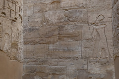 _RJS8104 (rjsnyc2) Tags: 2019 africa balloon ballooning boat d850 day egypt luxor nikon nile photography remoteyear richardsilver richardsilverphoto richardsilverphotography sunrise tombs travel travelphotographer travelphotography water river temple