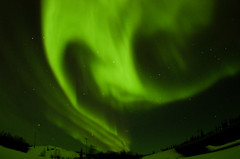 March Madness-124 (juan_guthrie) Tags: northernlights yellowknife nwt aurora