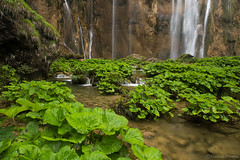 Plitvice Lakes National Park, Croatia (Federico Crovetto - www.federicocrovetto.it) Tags: plitvice lakes jezero nationalpark croatia landscape scenery waterfall nikonflickraward
