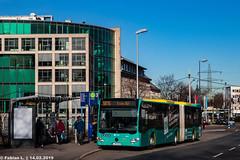 E MH 1821, Essen, Hollestr. (fabse_fabi) Tags: bus strase öpnv baum fotografie niederflur landschaft gelenkbus linienbus