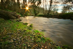 Nice summer evening by the river Alyn in Wrexham (jamiematthias1) Tags: river alyn wrexham wales countryside flowing bradley alynwaters northwales