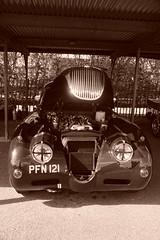 Jaguar XK150 1958, HRDC Track Day, Goodwood Motor Circuit (10) (f1jherbert) Tags: sonya68 sonyalpha68 alpha68 sony alpha 68 a68 sonyilca68 sony68 sonyilca ilca68 ilca sonyslt68 sonyslt slt68 slt sonyalpha68ilca sonyilcaa68 goodwoodwestsussex goodwoodmotorcircuit westsussex goodwoodwestsussexengland hrdctrackdaygoodwoodmotorcircuit historicalracingdriversclubtrackdaygoodwoodmotorcircuit historicalracingdriversclubgoodwood historicalracingdriversclub hrdctrackday hrdcgoodwood hrdcgoodwoodmotorcircuit hrdc historical racing drivers club goodwood motor circuit west sussex brown white sepia bw brownandwhite