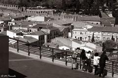 013759 - Toledo (M.Peinado) Tags: muralla mirador toledo provinciadetoledo castillalamancha españa spain 2019 marzode2019 24032019 canon canonpowershotsx60hs ccby monocromático blancoynegro byn blackandwhite bw