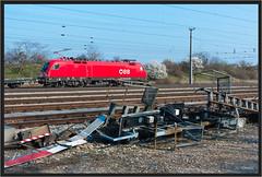 "Newly Painted Special Taurus ("" Wiener Schule "") Tags: öbb oebb obb austria 1016 1116 taurus eisenbahn railway railroad lok lokomotive loco locomotive"