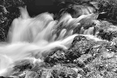 2017 Roughlock Falls In Monochrome 34 (DrLensCap) Tags: roughlock falls in monochrome spearfish canyon scenic drive black hills national forest south dakota sd waterfall bw and white 40 day adventure robert kramer