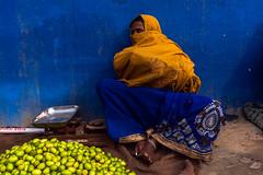 Sangam, Prayagraj Ardh Kumbh Mela, 2019 (ayashok photography) Tags: ayp3799 cwc chennaiweekendclickers kumbhmela prayag kumbh mela ardhkumbhmela triveni sangam allahabad uttarpradesh cwc701