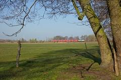 DB 182 005 Fontane + RE 3166 Frankfurt(Oder) - Brandenburg Hbf  - Potsdam Wildpark West (Rene_Potsdam) Tags: deutschland br182 taurus railroad treinen trenes trains züge europe europa potsdamwildparkwest deutschebahn