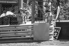 Safety Car (Rudi Pack Photography) Tags: barc brscc marshalls brandshatch msv kent blancpain endurance flags safetycar post barrier motorsport motorracing circuit