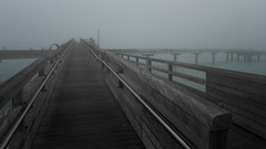 A foggy day on the Baltic Sea - (Ostseeleuchte) Tags: ostsee balticsea totalvernebelt seebrücke pier foggyday