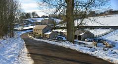 Sheldon (PentlandPirate of the North) Tags: sheldon derbyshire snow peakdistrict england