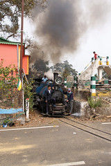 Chunbhatti - Loop Nº 3 (gooey_lewy) Tags: darjeeling himalayan mountain railway steam tour magazine india narrow gauge sharp stewart b class 040 tank saddle well loco locomotive train rail indian steep hill cart road west bengal charter dhr dhmr joy toy forest jungle 782 sun light railroad tree people grass haze mist tindaria works tindharia up staff crew oiling point cylinder loop child children bridge chunbhatti nº 3