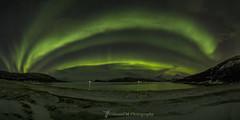 Northern Lights in Sommarøy, Norway (Sònia CM) Tags: nature naturaleza night northerlights northernlights norway noruega fuji fujifilm samyang samyang12mm xt2 fujixt2 aurora auroraboreal auroraborealis panoramic panorama longexposure largaexposicion llargaexposicio