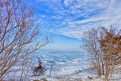 By The Shore (gabi-h) Tags: lakeontario snow ice winter trees sky clouds gabih princeedwardcounty cold lake february horizon lakeside shore