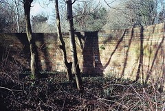 Old Wall (martin.bruntnell) Tags: moviefilm canonftb