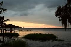 Sunset - Lake Josephine (MJ Harbey) Tags: sunset florida usa sebring lakejosephine sillouette jetty boatjetty spanishmoss reflections nikon d3300 nikond3300