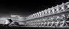 Ciutat de les arts i les ciències I (Salva Pagès) Tags: valencia ciutatdelesartsilesciències museu museum blancoynegro blancinegre blackandwhite blancetnoir monochrome monocromo perspectiva perspective comunitatvalenciana arquitectura architecture