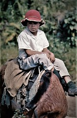 Boy From The Mountain (Alfredo Rafael) Tags: asahi spotmatic panama film ektachrome horseback boy