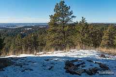 Snowy Fire Ring (kevin-palmer) Tags: custernationalforest ashland montana december winter snow sunny blue sky nikond750 tamron2470mmf28 yagerbutte firering hills scenic view afternoon pine trees