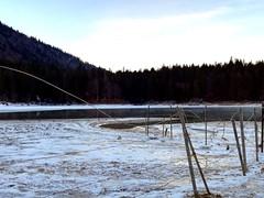 Frozen Landscape [Fusine In Valromana - 1 January 2019] (Doc. Ing.) Tags: 2019 fusineinvalromana tarvisiano friuli friuliveneziagiulia fvg nordest italy fusine winter ice snow cold landscape lake nikond5100