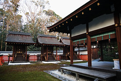SDQ_1131 (koyaman3422) Tags: 京都 kyoto sigma sdquattro 1770mm 下鴨神社