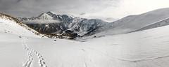 BSS-0006 (Se.By.) Tags: mtskhetamtianeti georgia ge kazbek climbing казбек грузия winter mountains mountaineering mountainscape highland მყინვარწვერი мкинварцвери 5033 8 5034 caucasus caucasusmountains