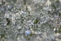 When The Snow Thaws (steve_whitmarsh) Tags: macro closeup art ice snow crystal texture topic