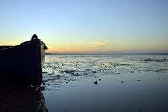 Sunrise over Southend on sea  -  (Selected by SHUTTERSTOCK) (DESPITE STRAIGHT LINES) Tags: southend southendonsea southendpier pier sunriseoversouthend sunriseoversouthendpier sunriseoversouthendonsea sunrise sea seaside shore shoreline tide tidal bay beach sand sandy sandyshoreline sky cloud clouds cloudscape morning am firstlight light sunlight thegoldenhour goldenhour magichour themagichour nikon d800 nikond800 nikongp1 nikongps nikon2470mm nikkor2470f28 lowlight winter paulwilliams despitestraightlines getty flickr bythesea coast coastline coastal shutterstock