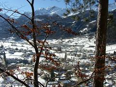 Landscape (Romi Corte) Tags: myplace landscape winter snow trees sunny happyday mountains poschiavo swiss svizzera
