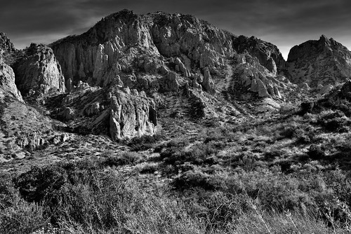 A Tonal Contrast of Yellows, Greens, and Browns Across the Peaks of the Chisos Mountains (Black & White, Big Bend National Park)